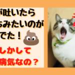 猫が嘔吐したらうんちみたいのが出てニオイも臭い!怖い病気なの?